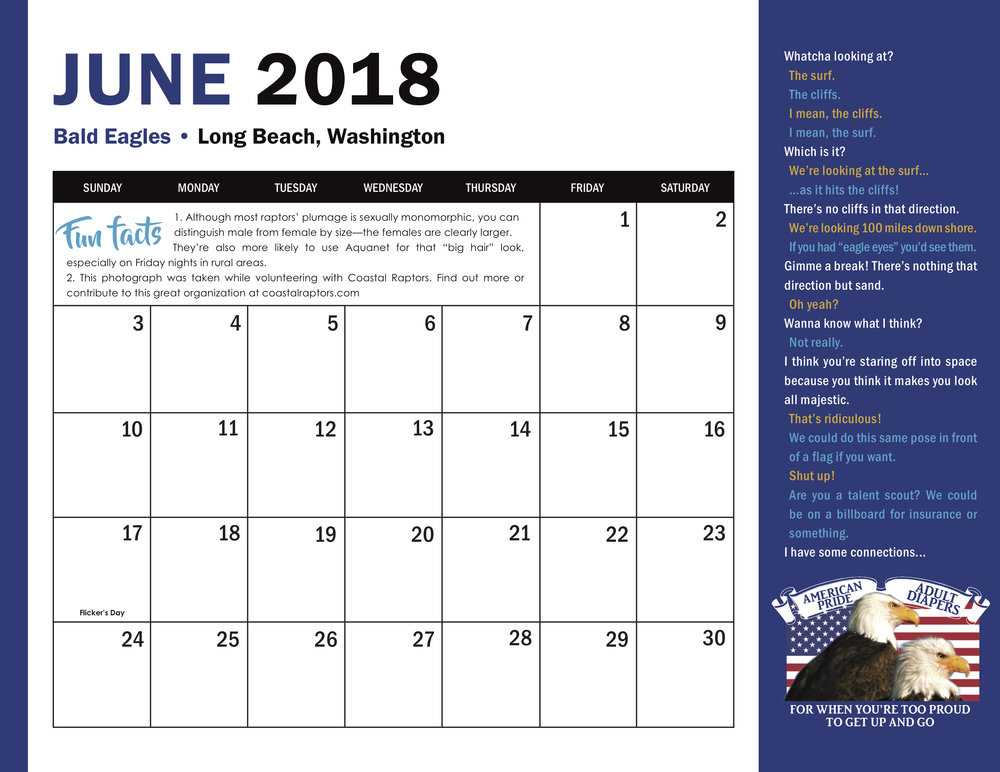 Bird Calendar 2018 Bald Eagle June grid final.jpg