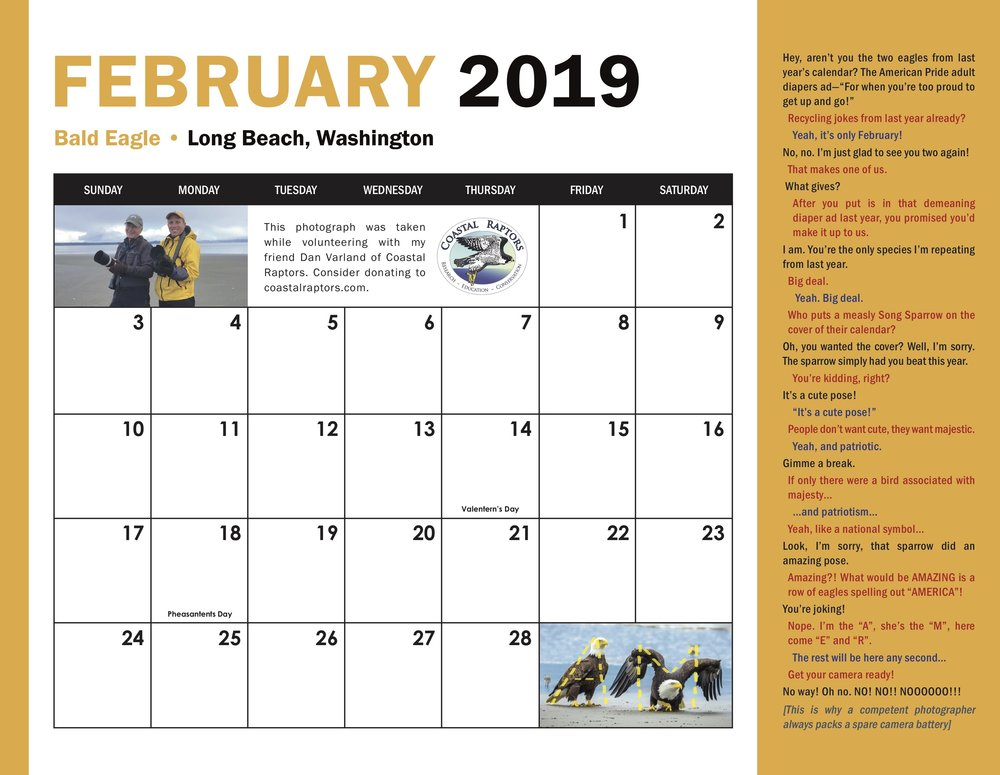 2019 Calendar February grid.jpg