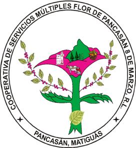 Logo Flor de Pancasan.png