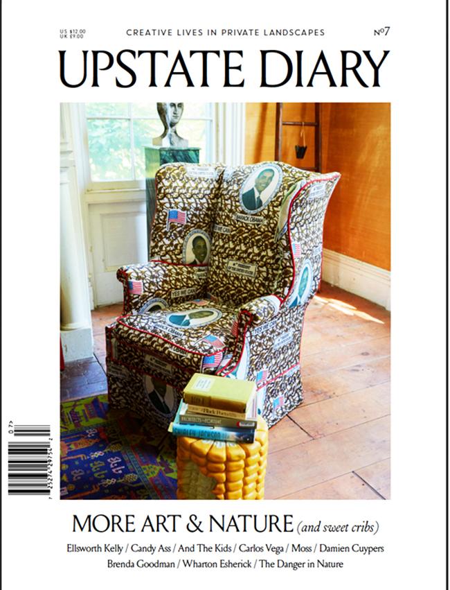 upstate cover.jpg