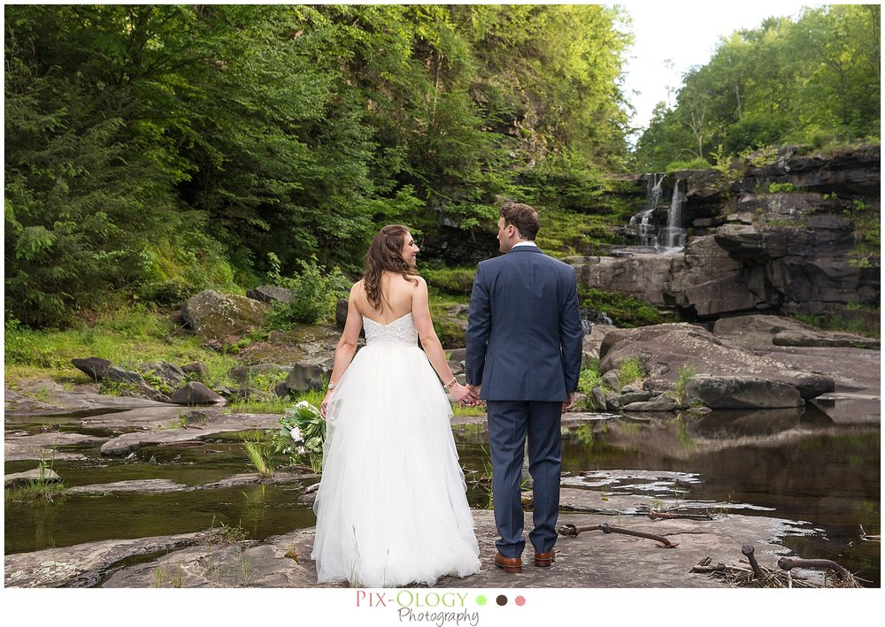Ledges Hotel Wedding Pix-Ology Photography