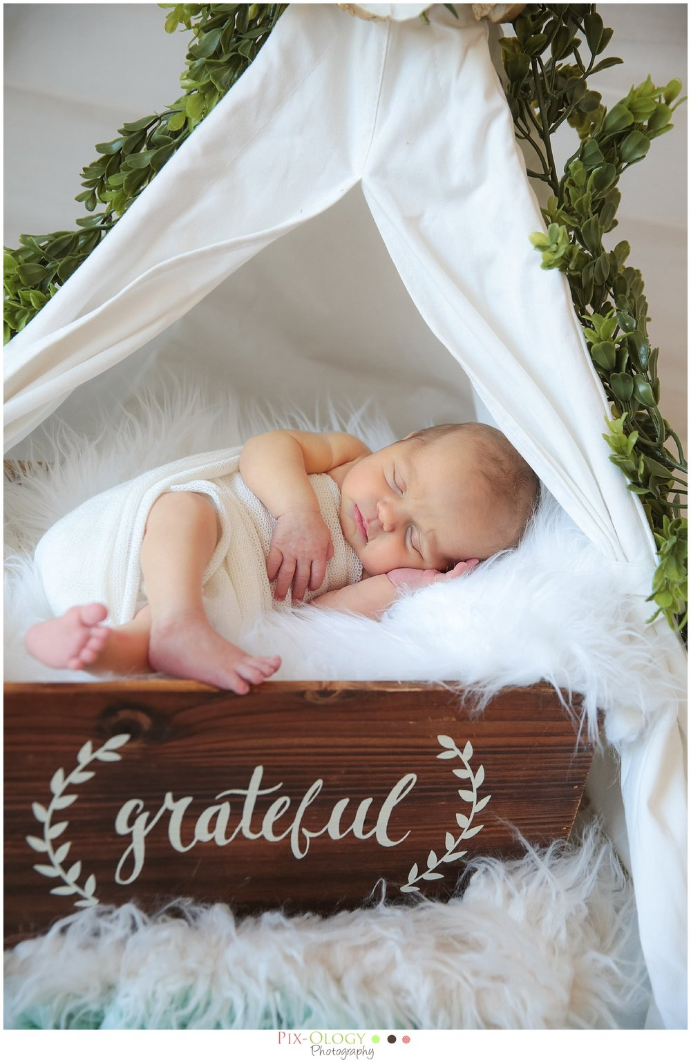 Newborn photography Bethlehem PA