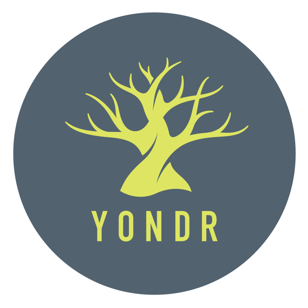 Yondr_LogoCircle_Color copy.png