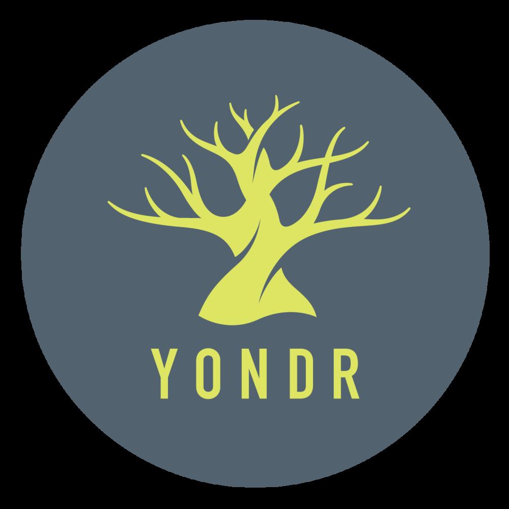 Yondr_LogoCircle_Color copy.png