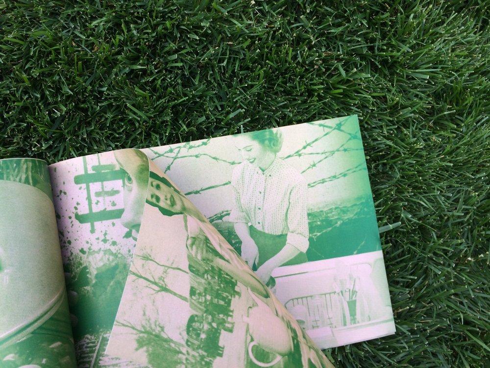 BOOK-7.jpg