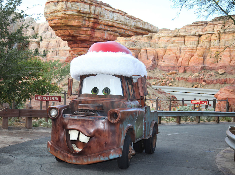 Mater-in-Holiday-Hat-0029772.jpg