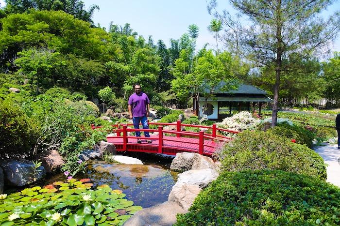 Puente decorativo en el Jardín Japonés.