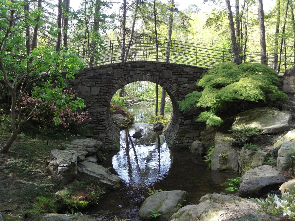 """Foto con el Moto Mod Hasselblad sin edición.Puente en el jardín botánico """"Garvan Gardens"""" de la Universidad de Arkansas"""