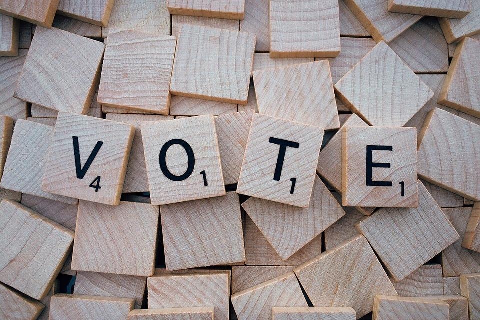vote-1804596_960_720.jpg