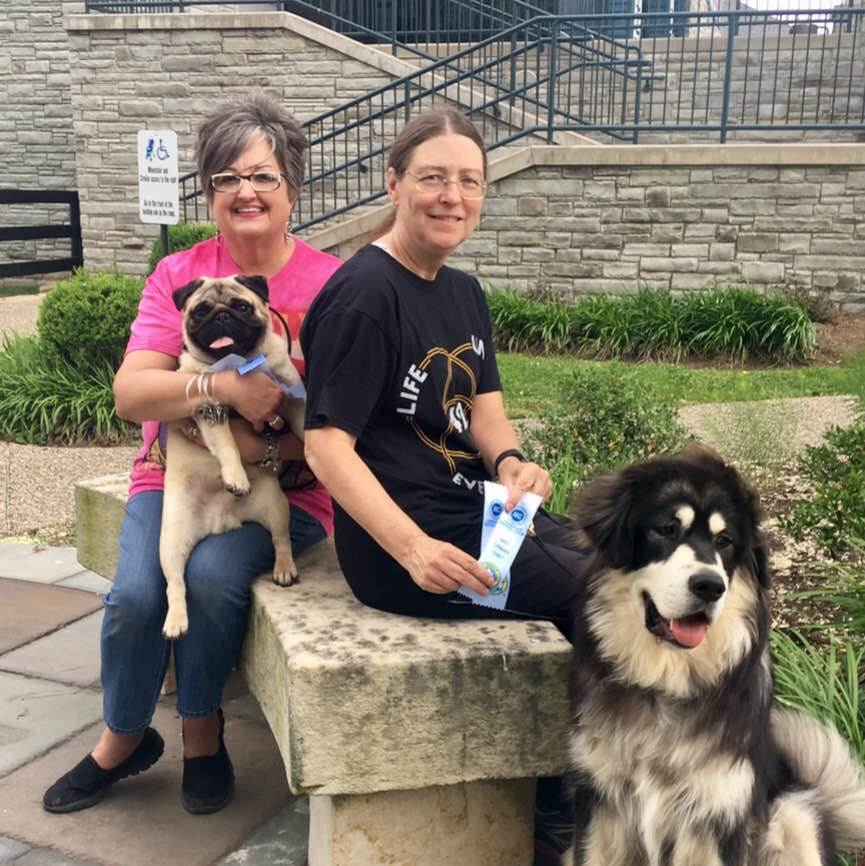 lexington city canine class for AKC urban dog title