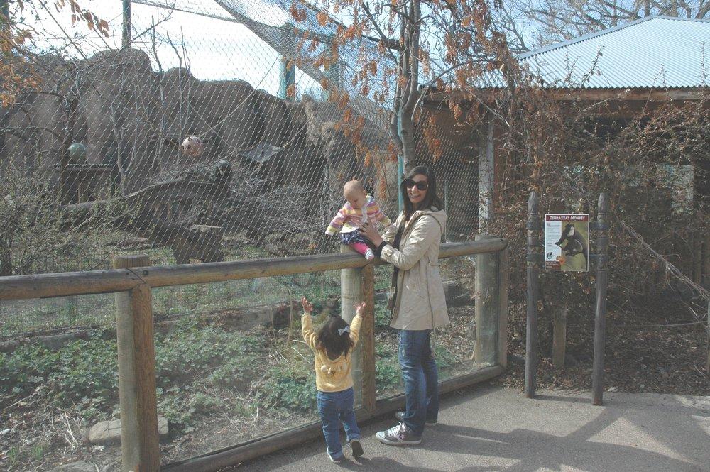zoo-mama-look.jpg