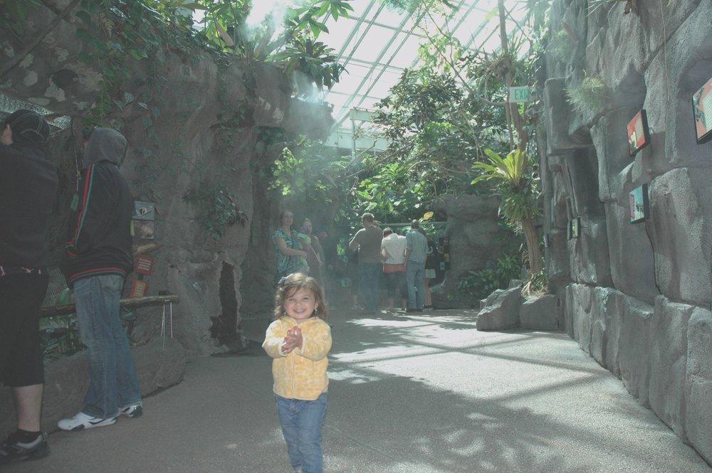 zoo-mist.jpg