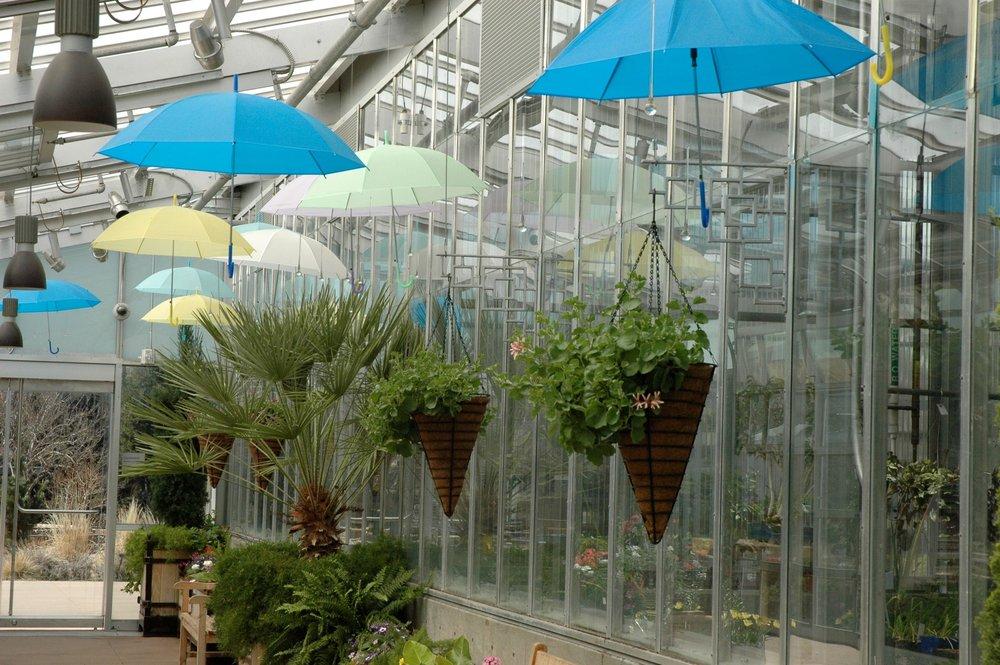 garden-umbrellas.jpg