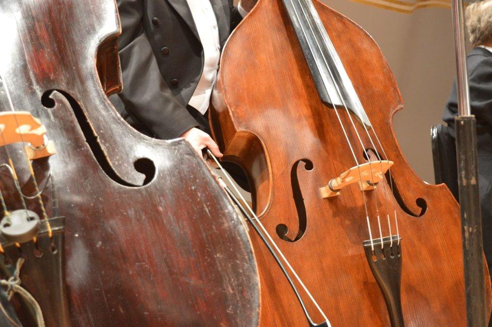 tiny-tots-orchestra-10.jpg