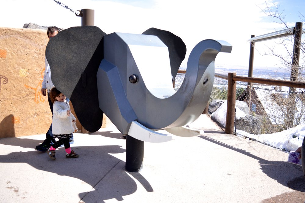 cheyenne-mountain-zoo-elephant.jpg
