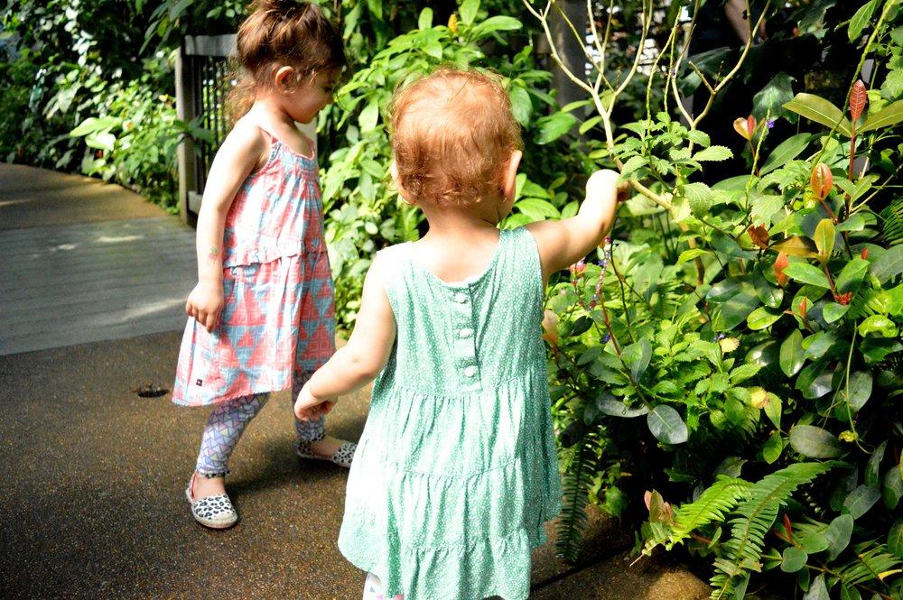 butterfly-pavilion-38-1.jpg