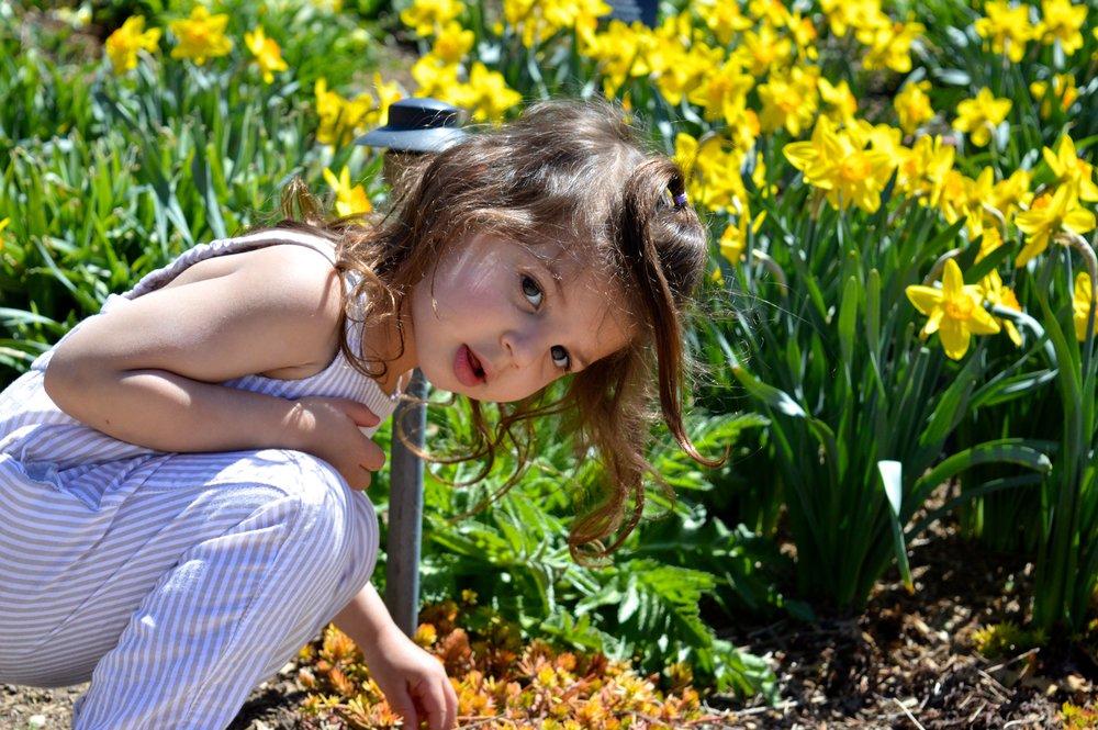 denver-botanic-gardens-April-13-10.jpg