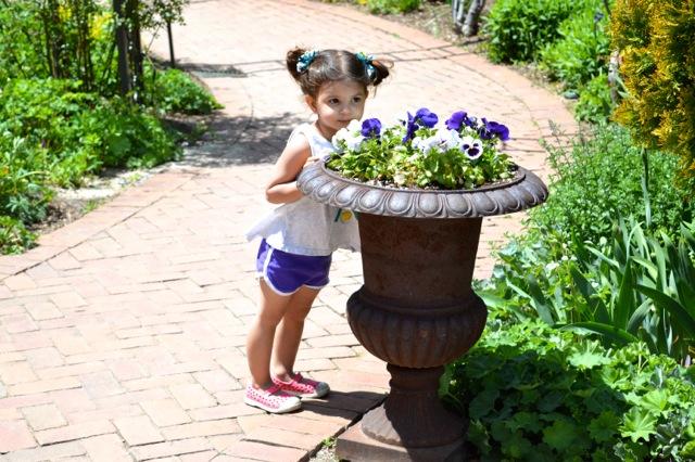 denver-botanical-gardens-childrens-area-24.jpg