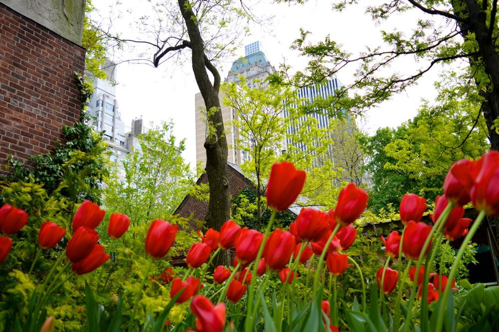 New-York-Spring-2016.24.jpg