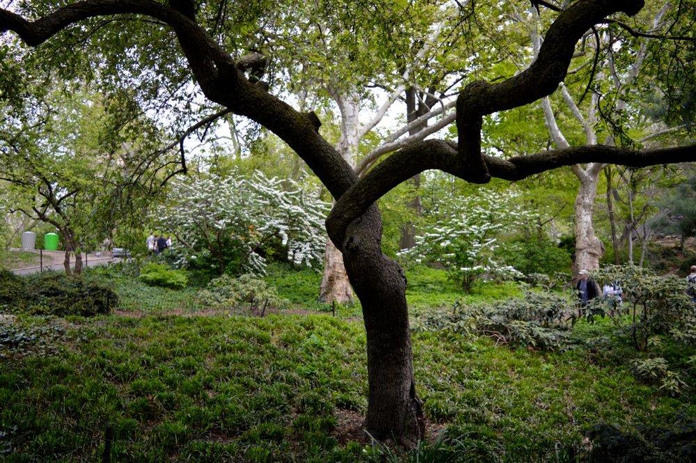 New-York-Spring-2016.25.jpg