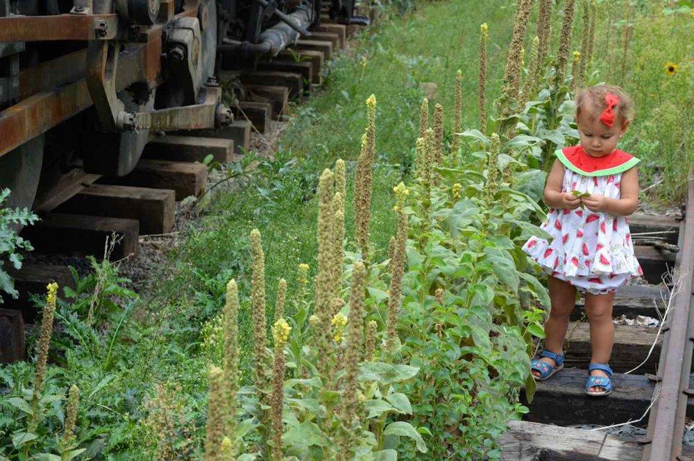 Colorado-Railroad-Museum-17.jpg
