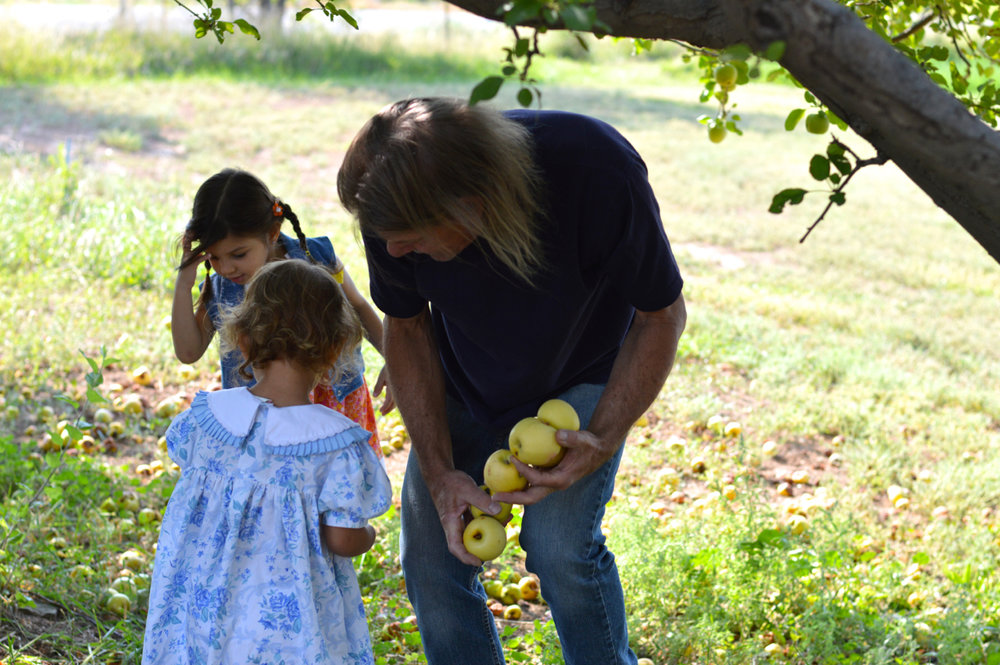 Apple-Picking-in-Colorado-6.jpg