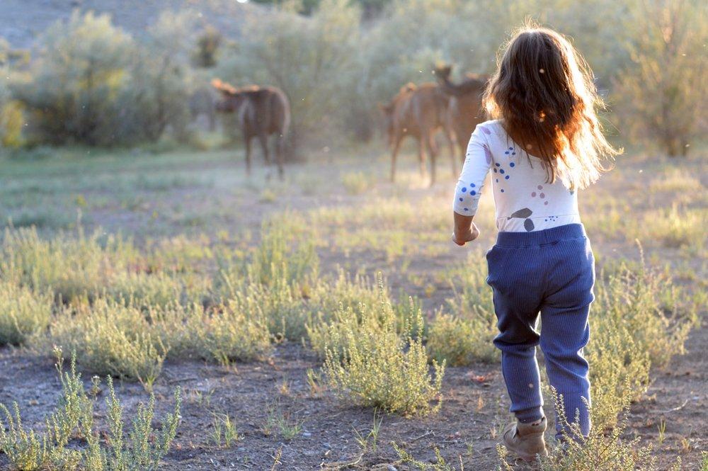 Olathe-Colorado-Hay-Farm-34.jpg