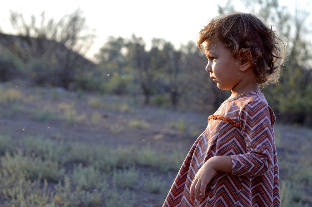 Olathe-Colorado-Hay-Farm-35.jpg