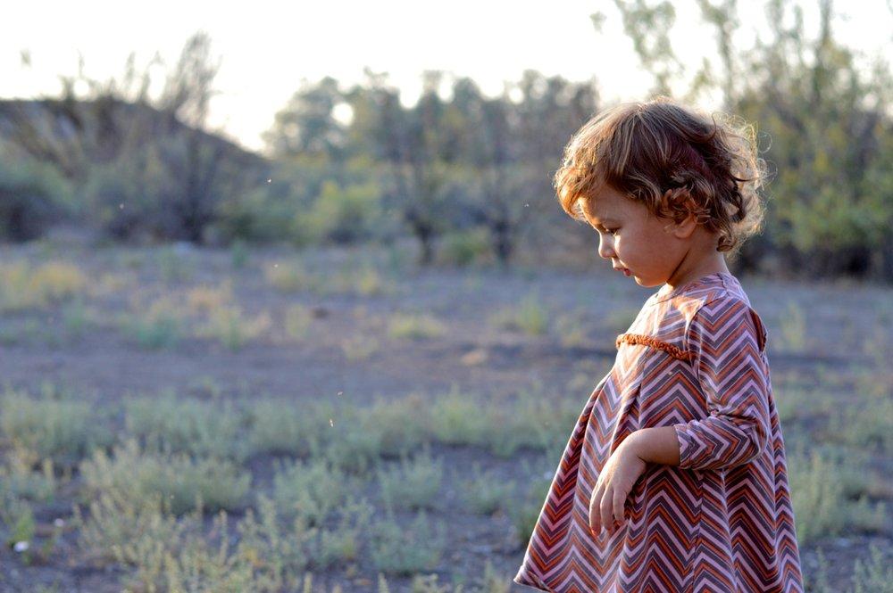 Olathe-Colorado-Hay-Farm-37.jpg