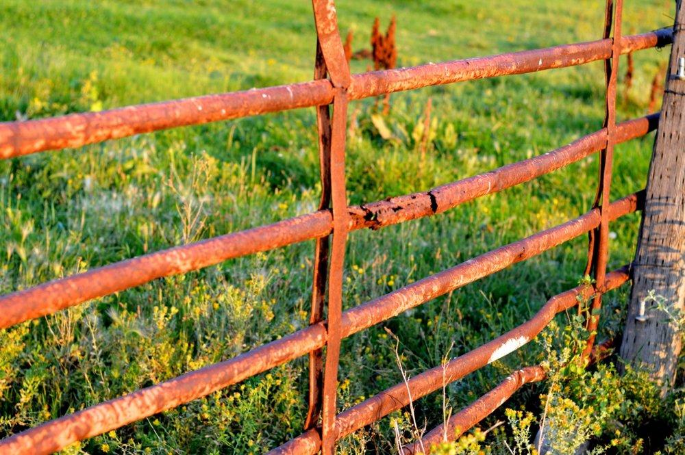 Olathe-Colorado-Hay-Farm-39.jpg