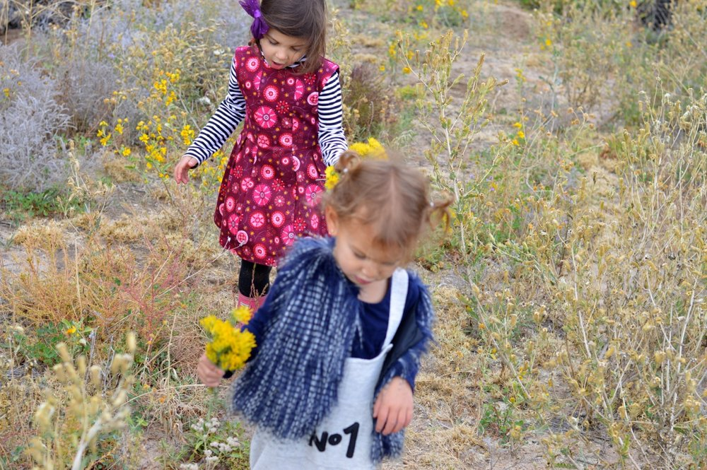 Nature-Walk-with-Toddlers-in-Colorado-69.jpg