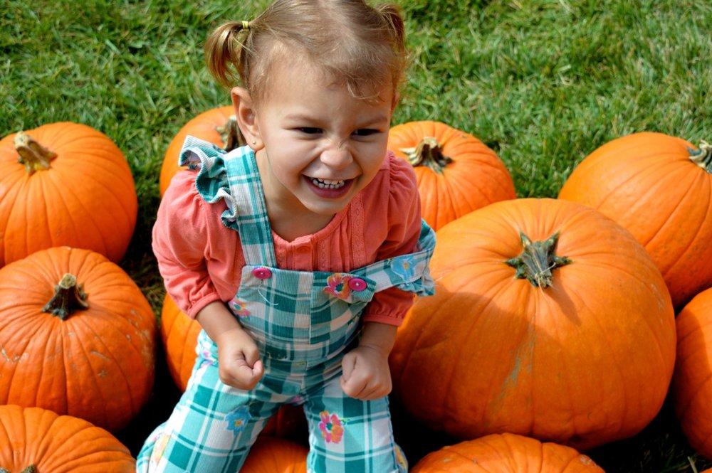 Church-Pumpkin-Patch-Aurora-Colorado-5.jpg