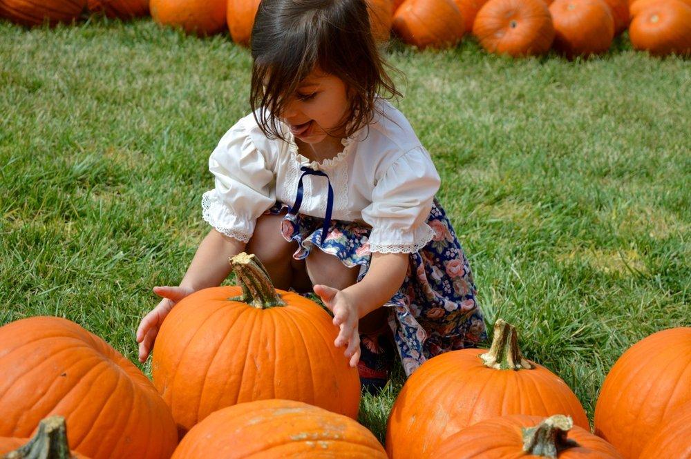 Church-Pumpkin-Patch-Aurora-Colorado-6.jpg