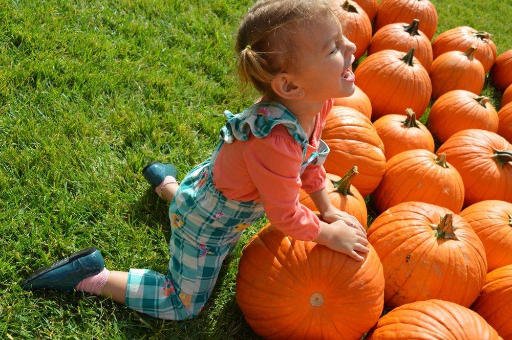 Church-Pumpkin-Patch-Aurora-Colorado-9.jpg