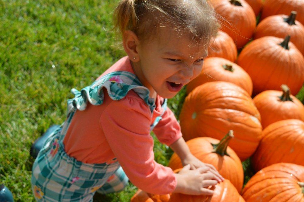 Church-Pumpkin-Patch-Aurora-Colorado-10.jpg
