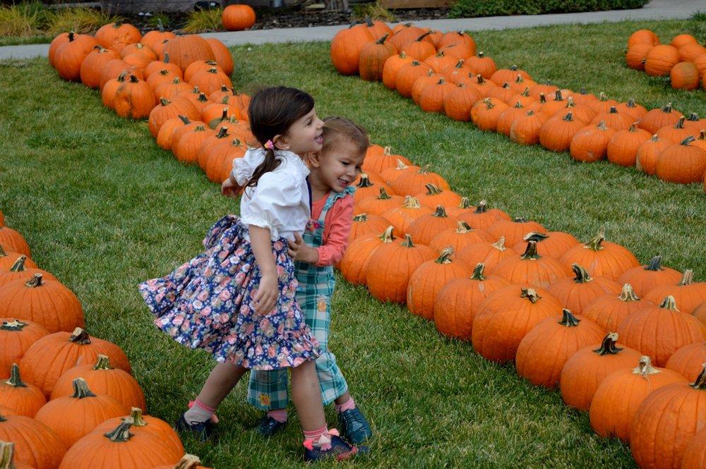 Church-Pumpkin-Patch-Aurora-Colorado-25.jpg