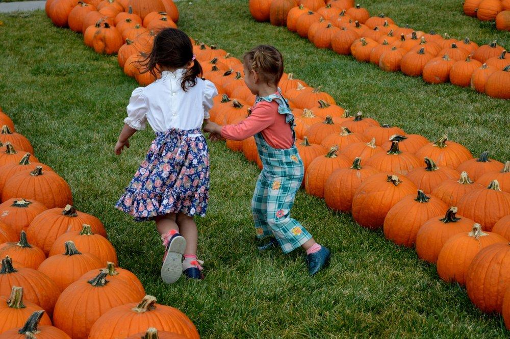 Church-Pumpkin-Patch-Aurora-Colorado-26.jpg