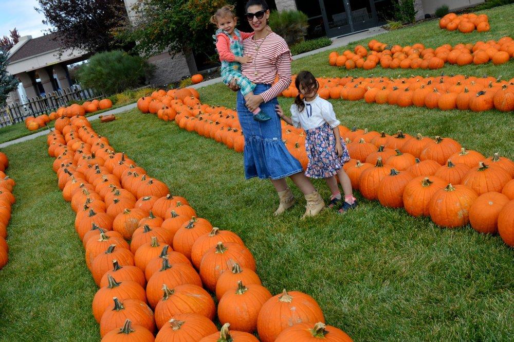Church-Pumpkin-Patch-Aurora-Colorado-27.jpg