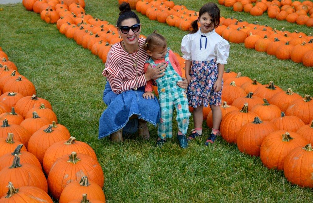Church-Pumpkin-Patch-Aurora-Colorado-28.jpg