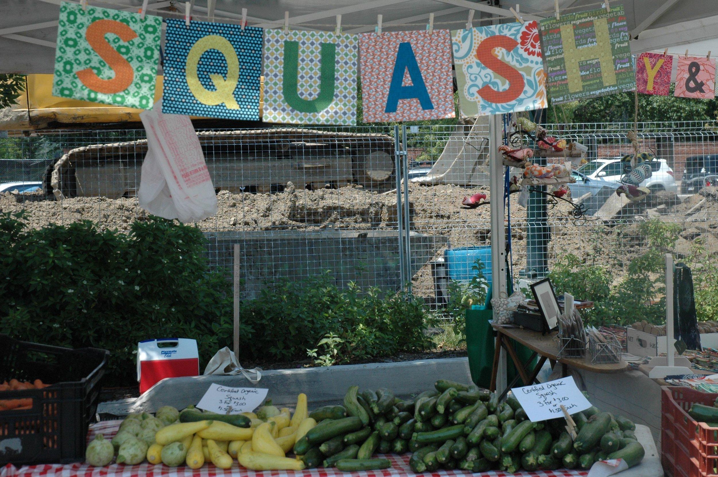 farm squash