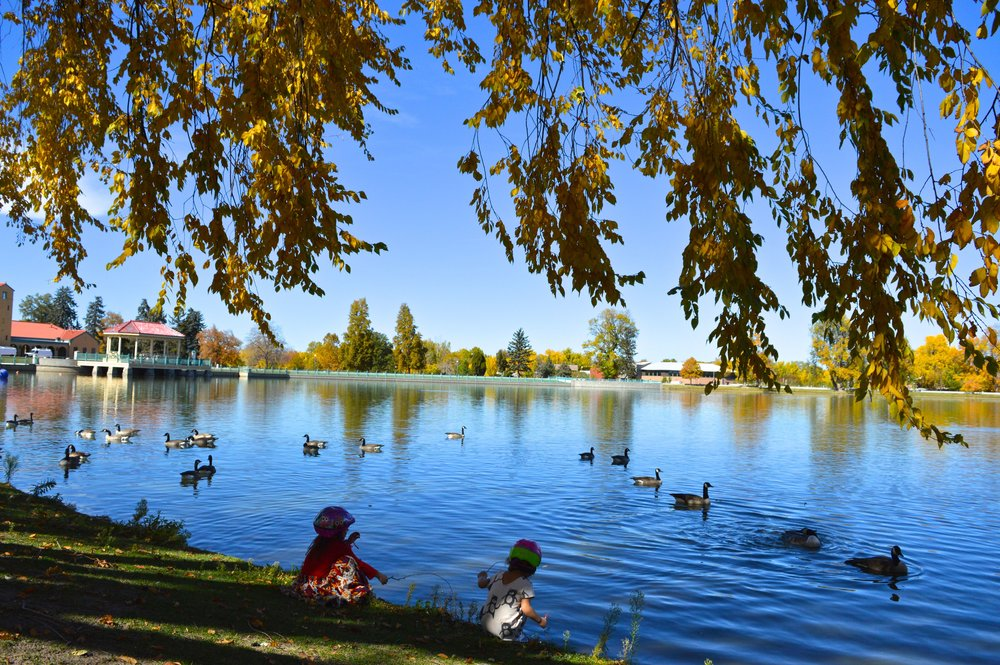 City Park Denver in Fall 1.1.jpg