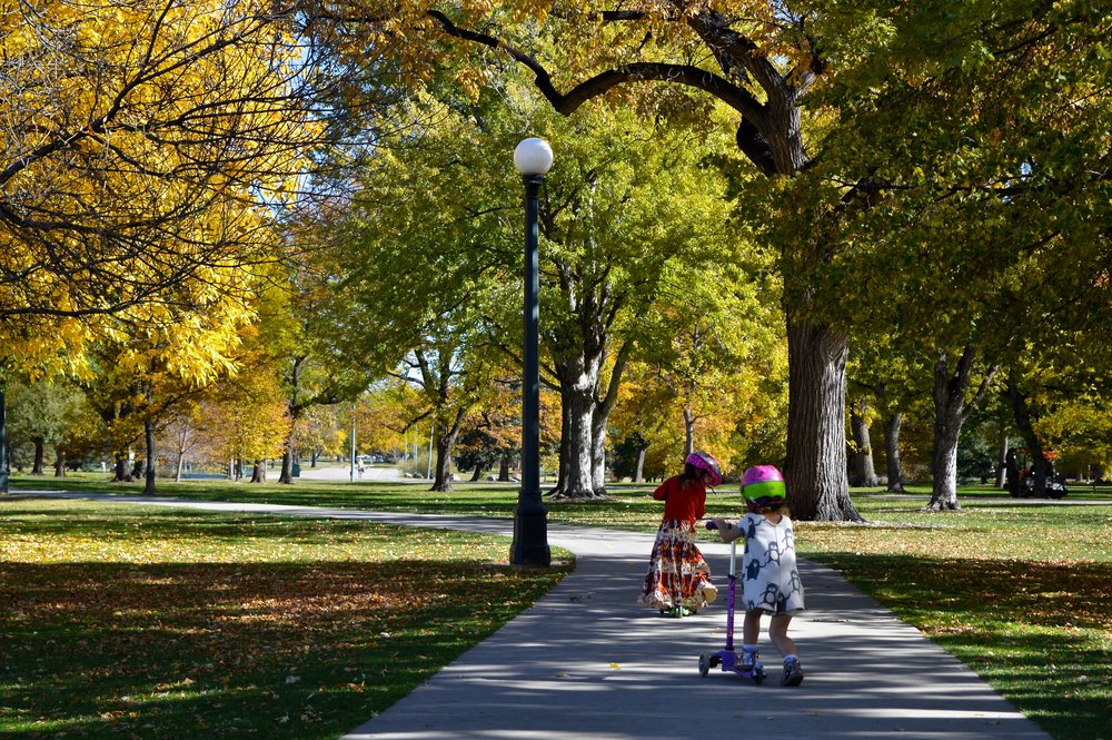 City Park Denver in Fall 5.5.jpg