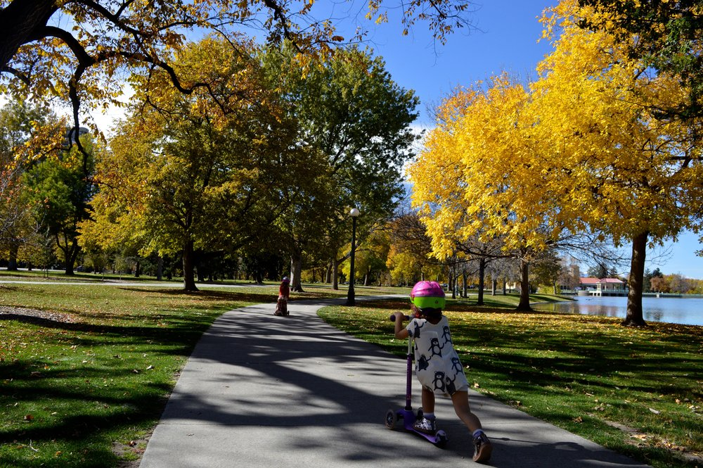 City Park Denver in Fall 6.6.jpg