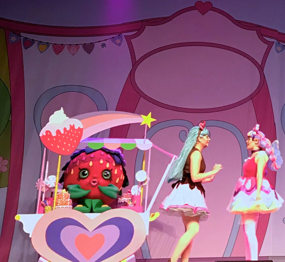 Shopkins Live Denver Tour 2017 19.jpg
