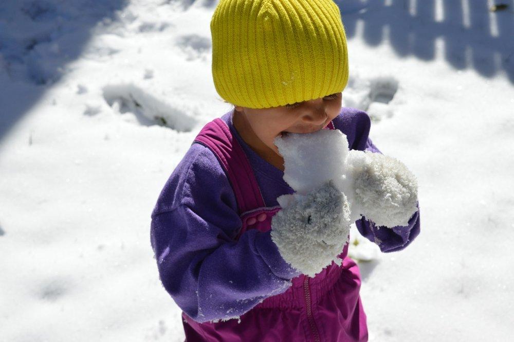 Snow in Colorado 1.jpg