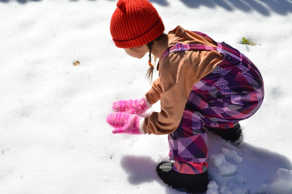 Snow in Colorado 2.jpg