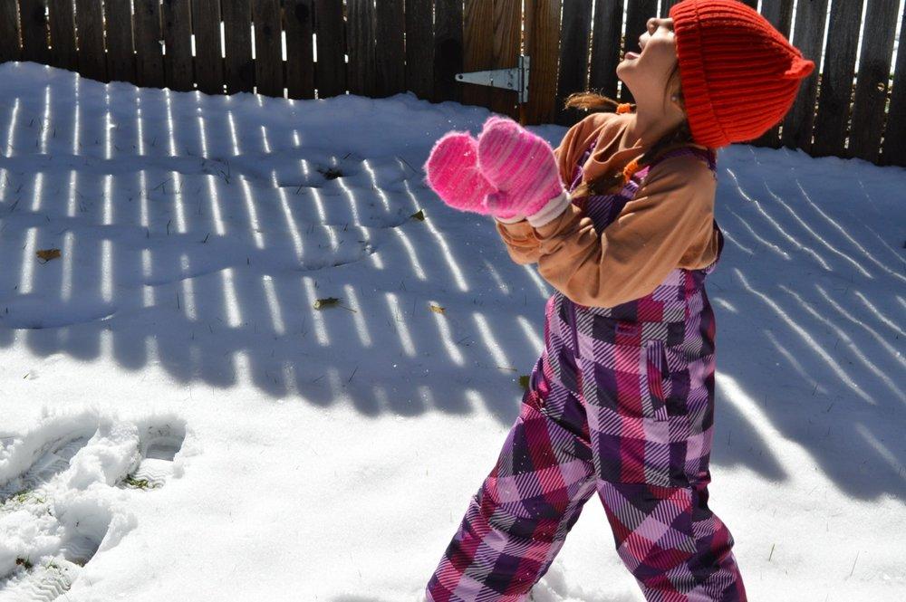 Snow in Colorado 4.jpg