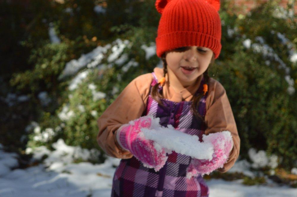 Snow in Colorado 22.jpg
