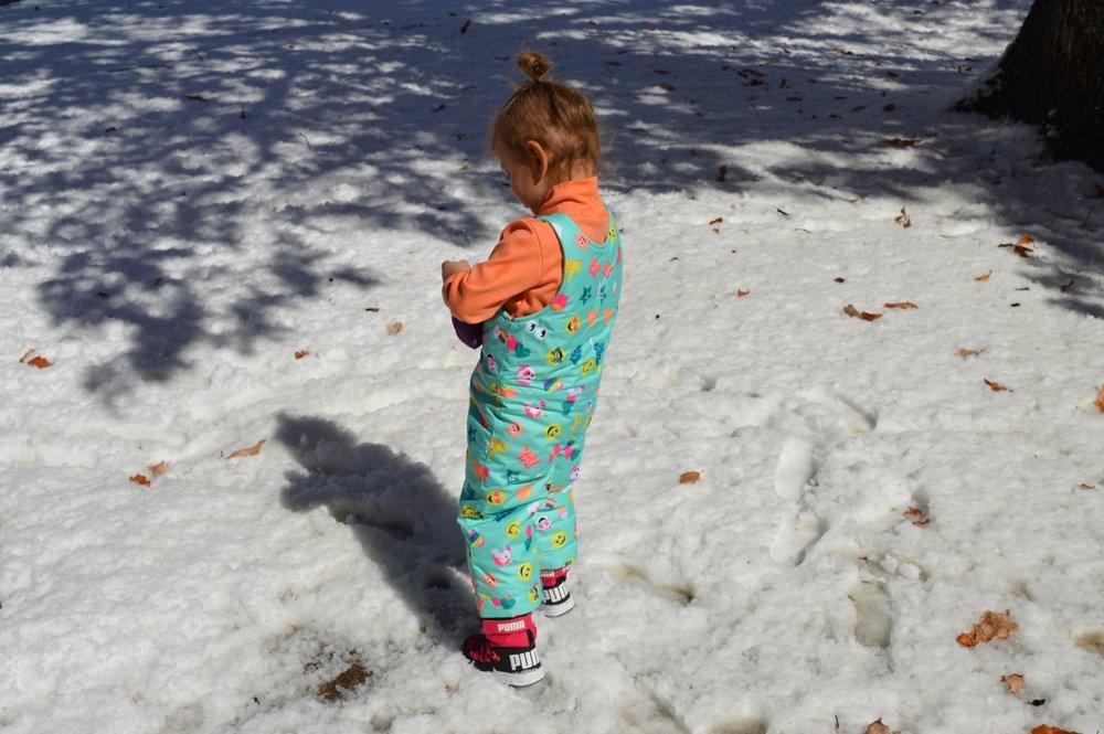 March snow 1.jpg