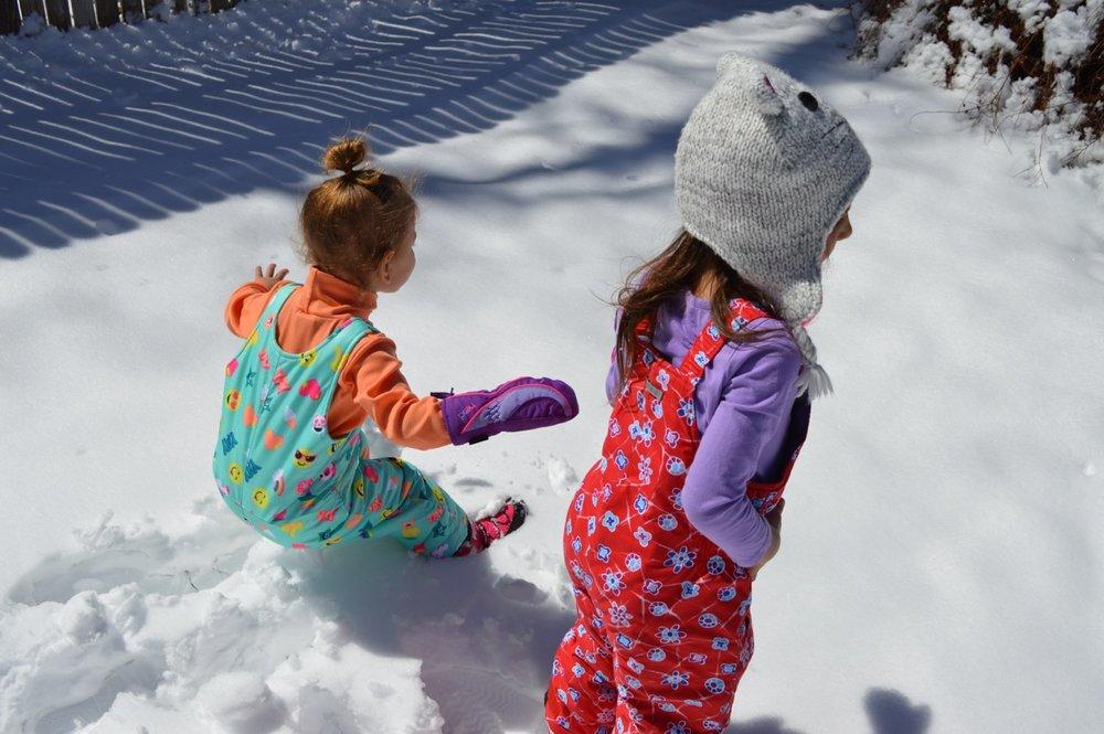 March snow 3.jpg